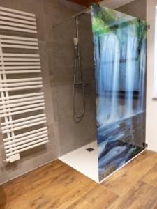 Glaswand Dusche mit Foto in 4070 Eferding