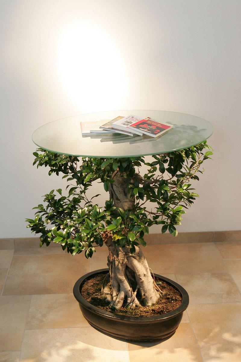 designeinzelstück lebender-Tisch wörtherseevilla kärnten